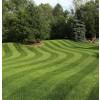 Weibang Legacy Lawn Stripes